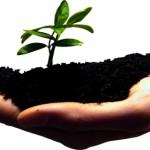 תוכנית עסקית לבדיקת כדאיות של חזון